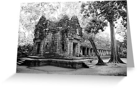 Ta Prohm Temple in Siam Reap by DebWinfield