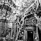 Tree hugging temple by DebWinfield