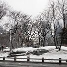 Winter in New York City by DebWinfield