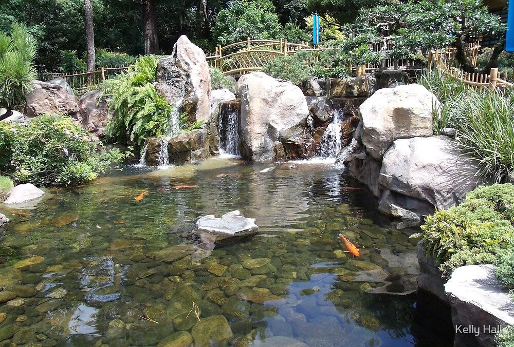 Koi Fish Pond by nutty1kel