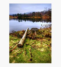 Tarn Hows, Lake District Photographic Print