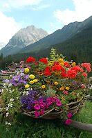 Canazei - Dolomiti - Italy by Arie Koene