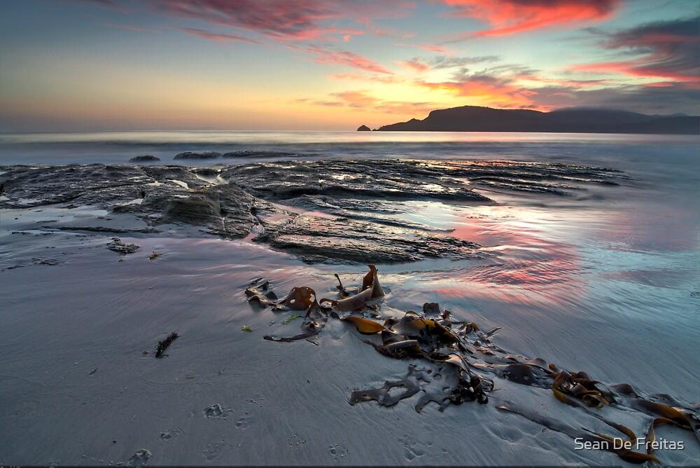 A sandy beach with little doggie footprints ... Bruny Island, Tasmania by PC1134