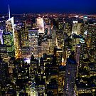 Skyline - NYC by Mark  Bennett