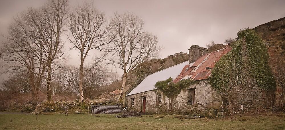 Tin Roof - Co. Kerry, Ireland by Mark  Bennett