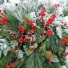 Snow on berries by Arie Koene