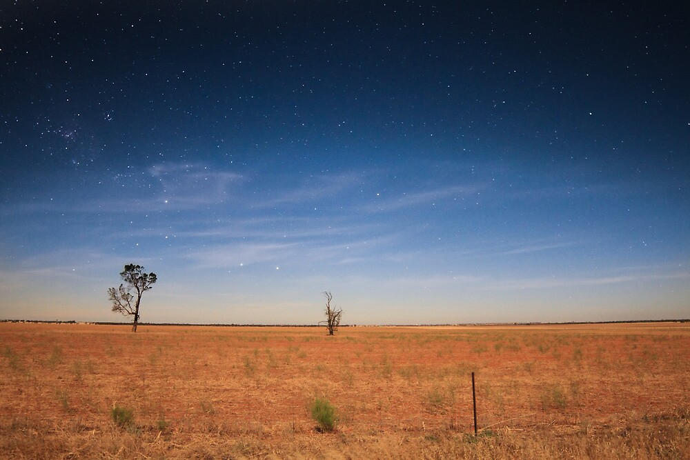 Mallee nightscape by Laura O'Dwyer