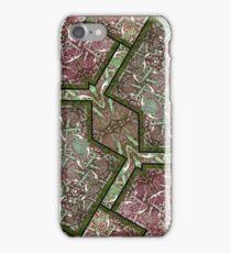 Luxury Geometric Ornament iPhone Case/Skin
