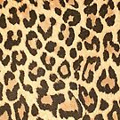 Leopard leather pattern texture closeup by homydesign