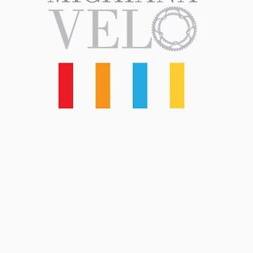 Michiana Velo Color Bars by gfurry