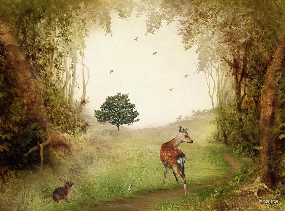 Woodland Friends by shalisa