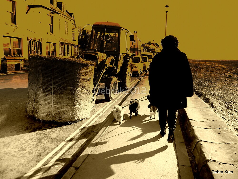 Woman with dogs  by Debrak2012