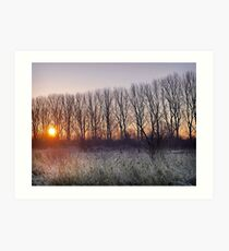 Winter Warmer Art Print