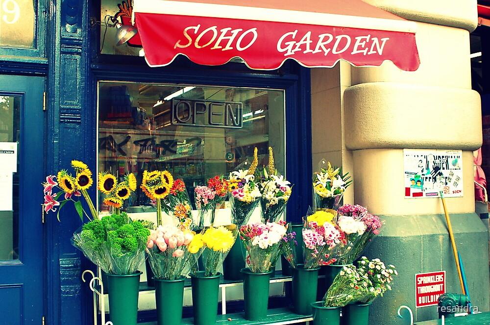 SOHO Garden by resandra
