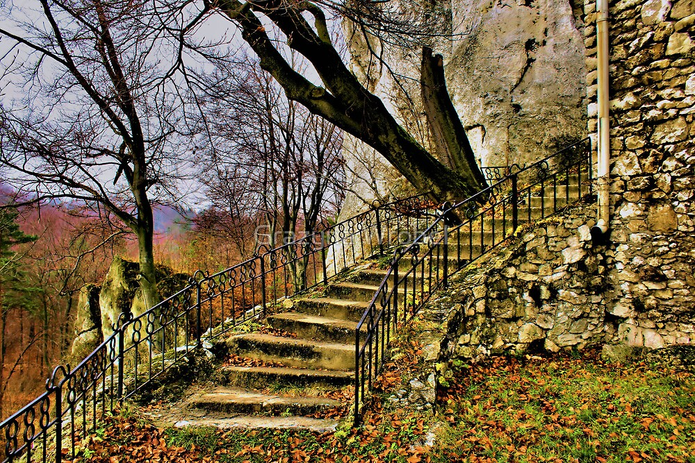 """stairs , at the Castle """"Bąkowiec """" by Grazyna W."""
