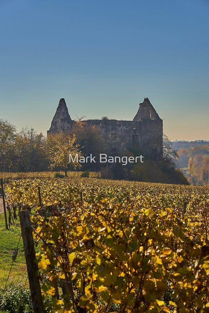 Burkheim, Kaiserstuhl - the castle by Mark Bangert