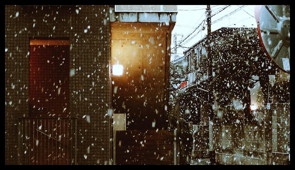 Snow in Japan by basilsilos