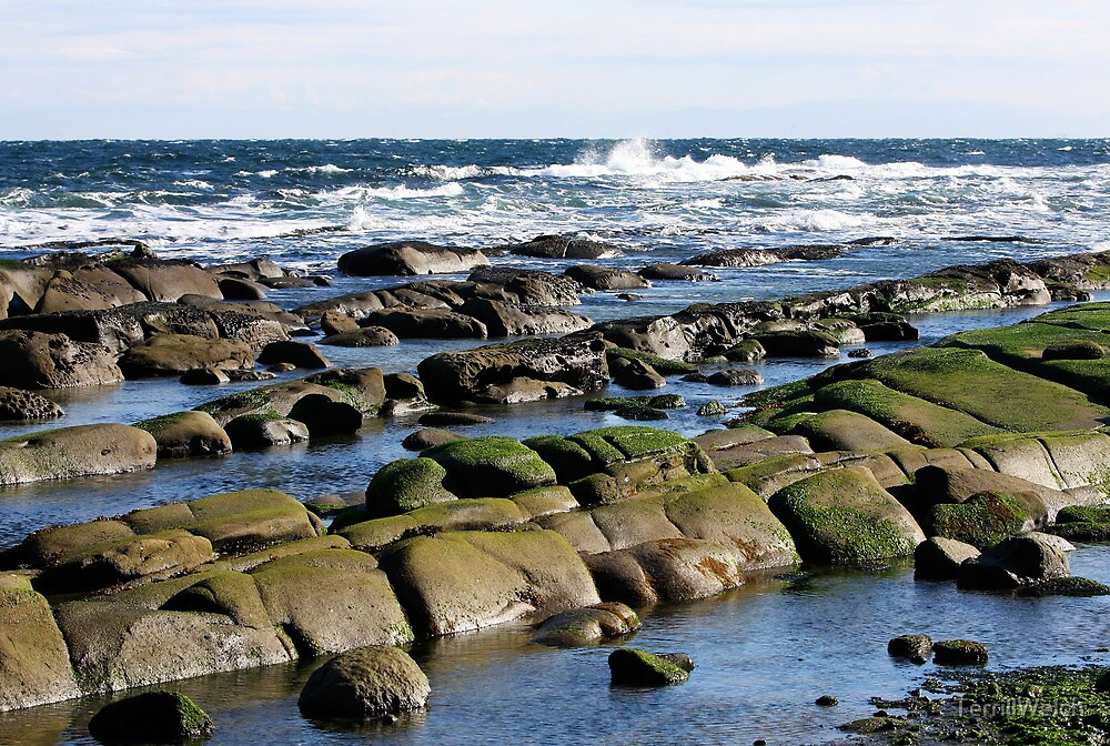 Rocks and a Cold Winter Sea by TerrillWelch