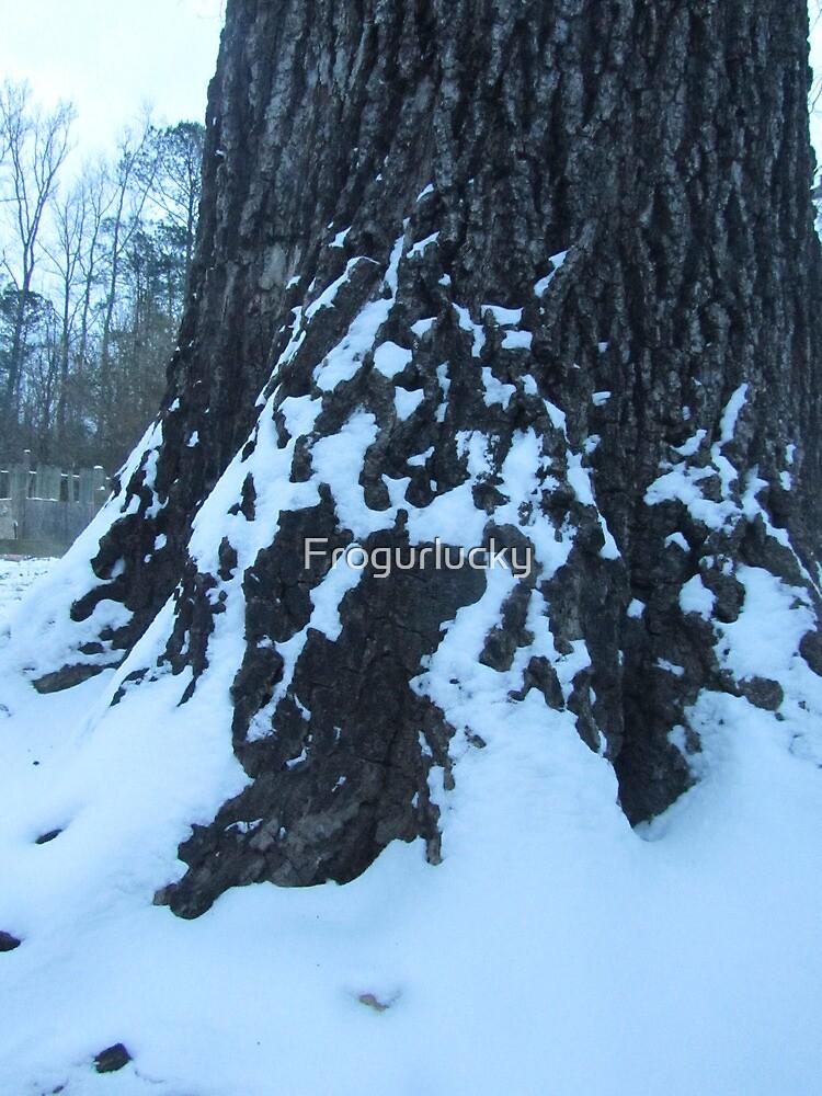 Snowy Tree Trunk by Frogurlucky