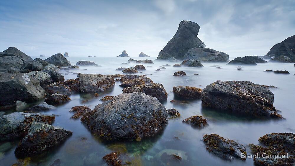Sea of Dreams by Brandt Campbell