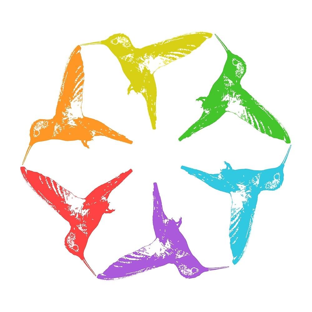 Hummingbird Color Wheel by rikki57