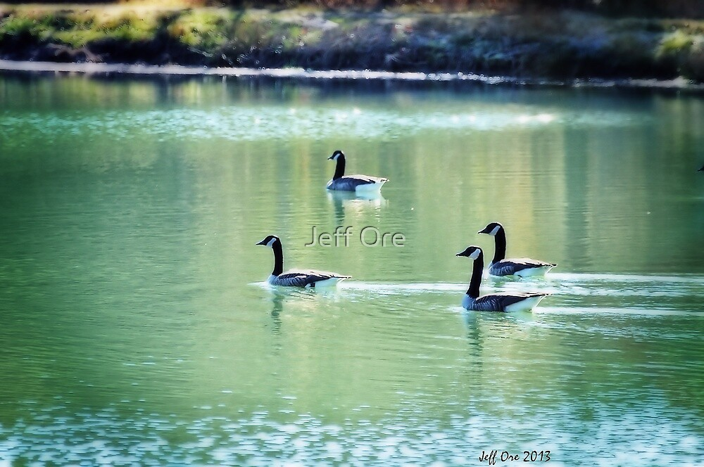 Geese On The Pond by Jeff Ore