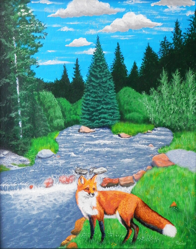 Fox beside mountain stream by StephenLTurner