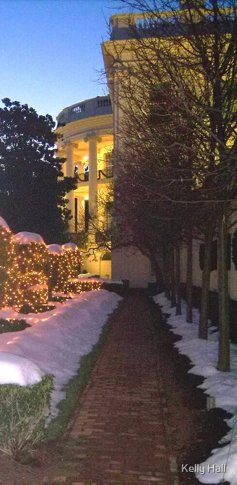 Snowy walkway  by nutty1kel