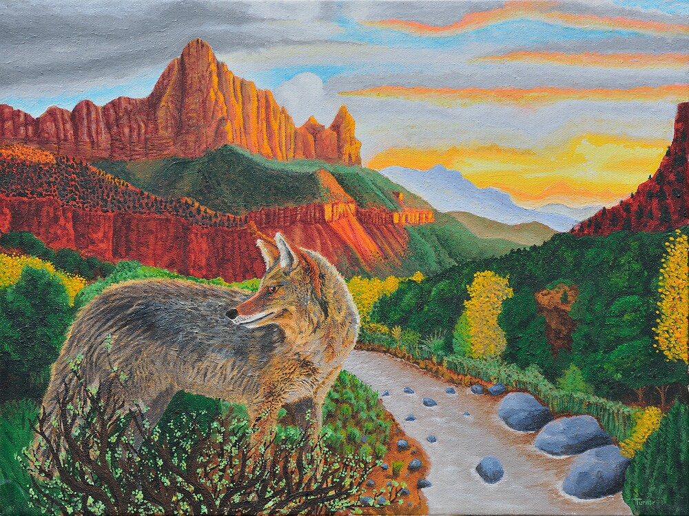 Coyote at sunset by StephenLTurner