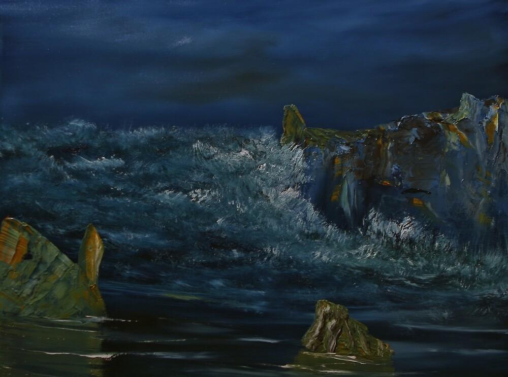 Coastal Evening by David Snider
