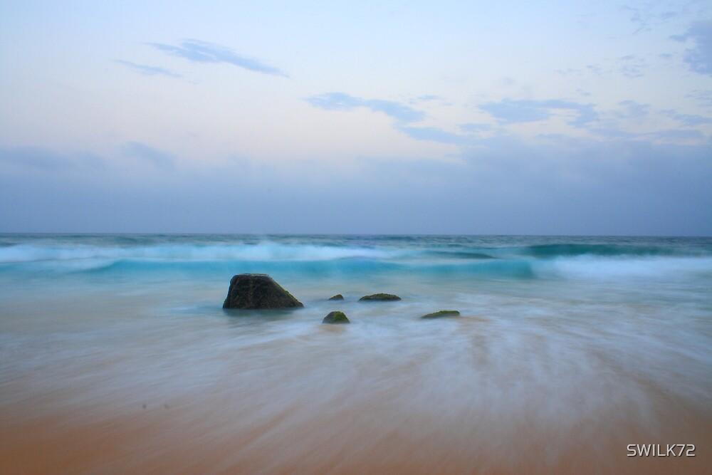 Wave Break by SWILK72