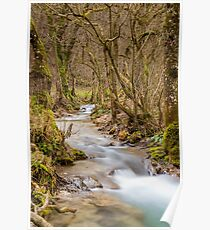 Bad Urach Waterfall, Southern Germany Poster
