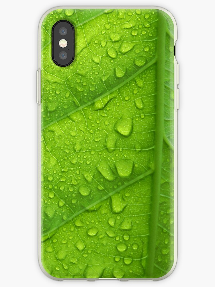 Wet Leaves by Budiid