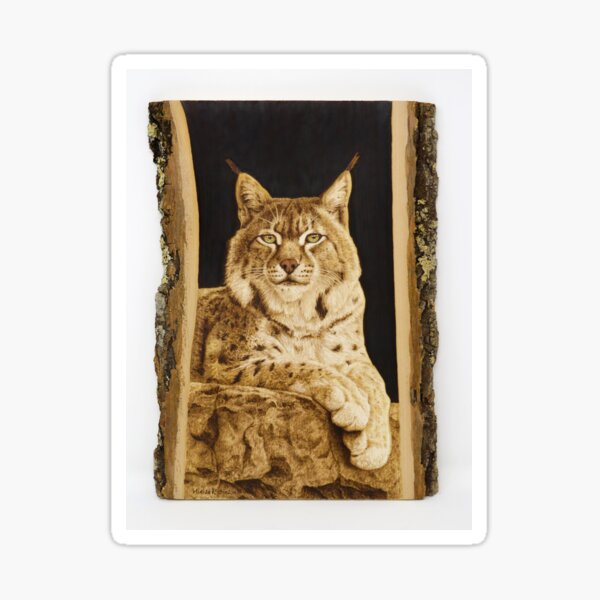 Bobcat woodburning by Minisa Robinson Sticker