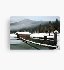 4 times H2O (water,snow,ice and mist) Canvas Print