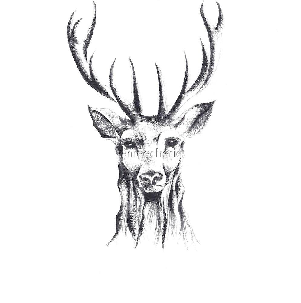 Buck by ameecherie
