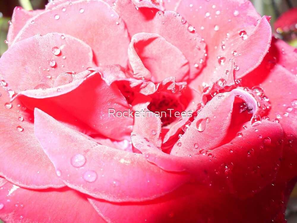 A Rose by RocketmanTees