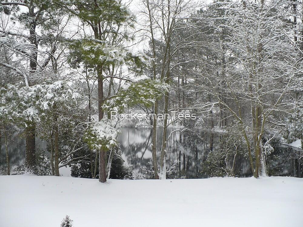 Winter Pond  by RocketmanTees