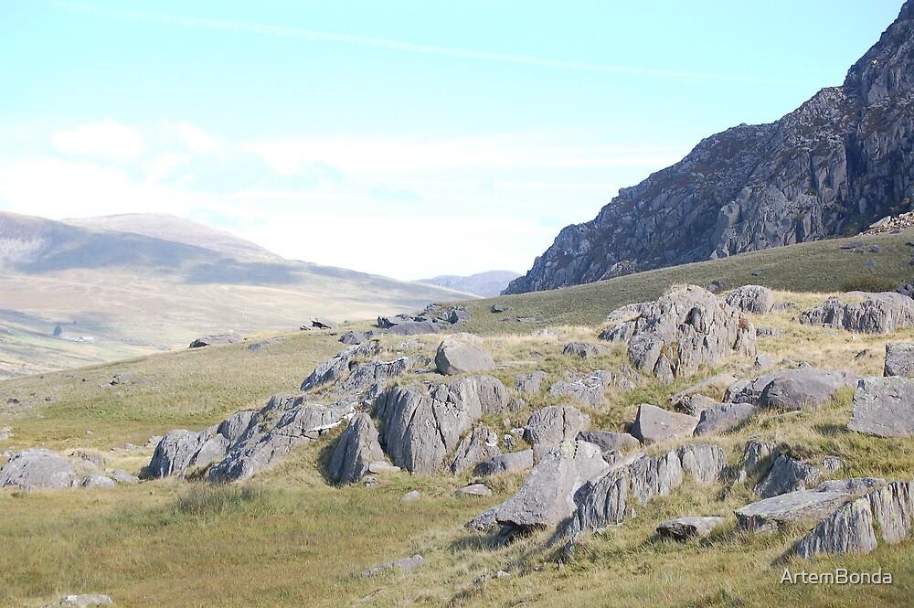 Snowdonian Landscape by ArtemBonda