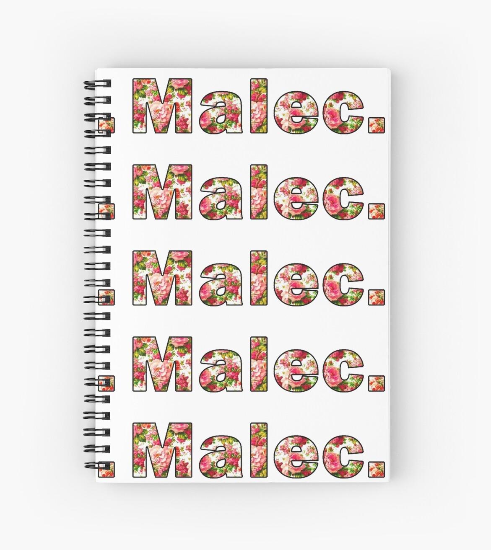 TMI/Shadowhunters - Magnus/Alec (Malec) by ClaireDuCraine