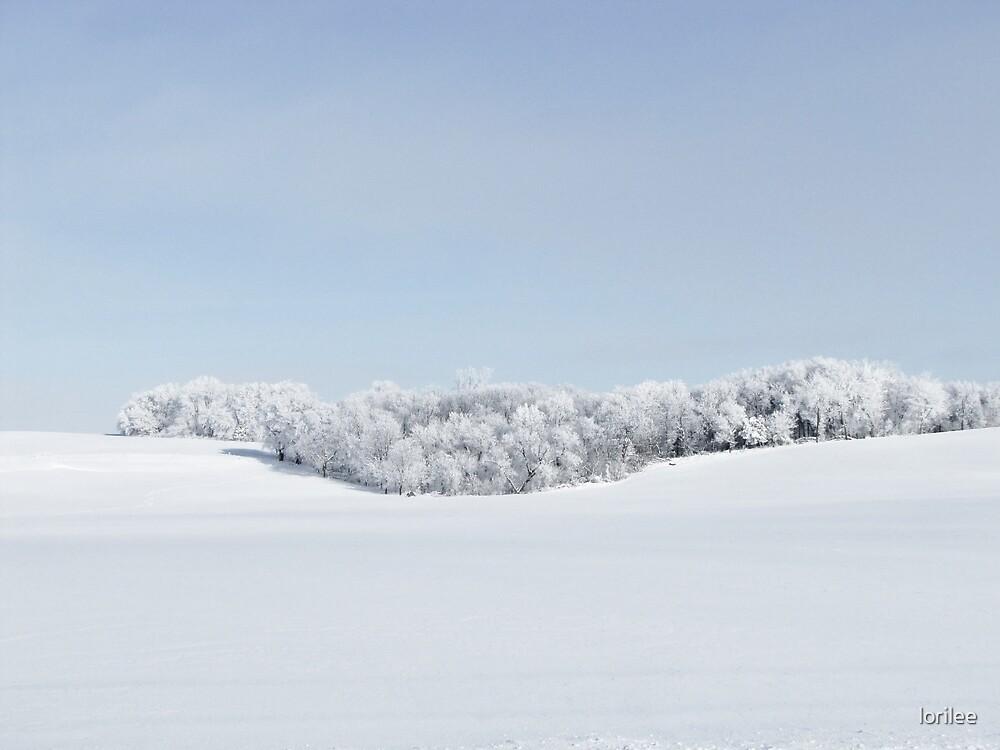 Winter Wonderland by lorilee