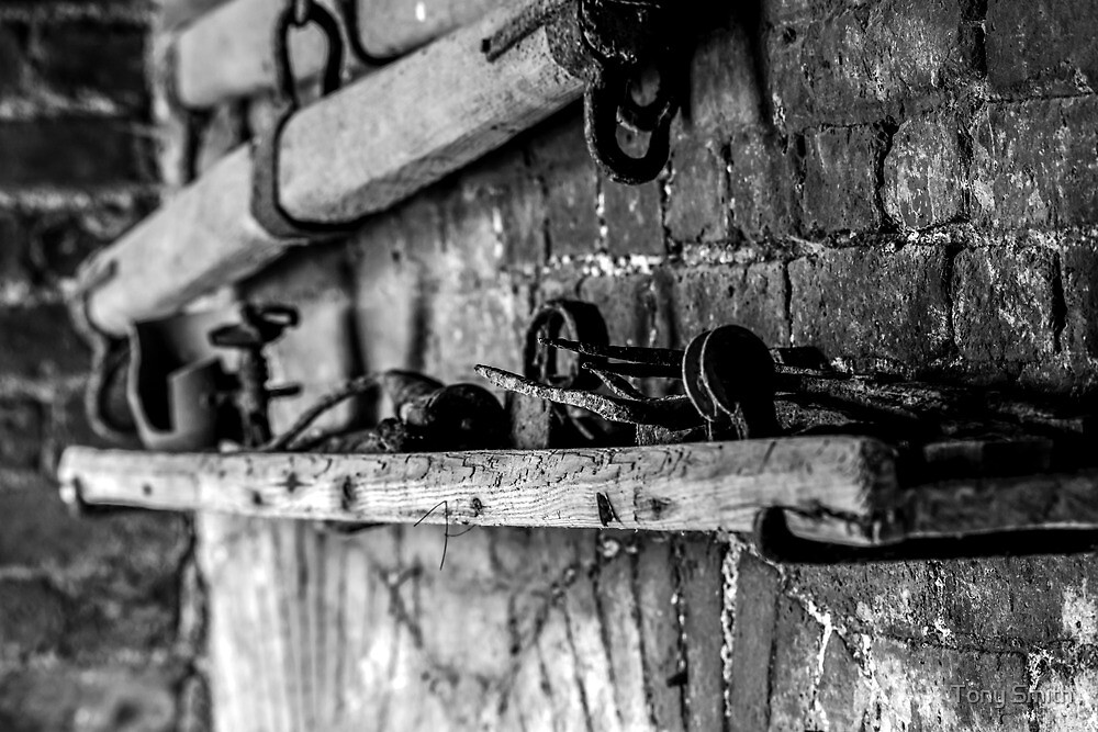 Old rusty tools on a shelf by Tony Smith