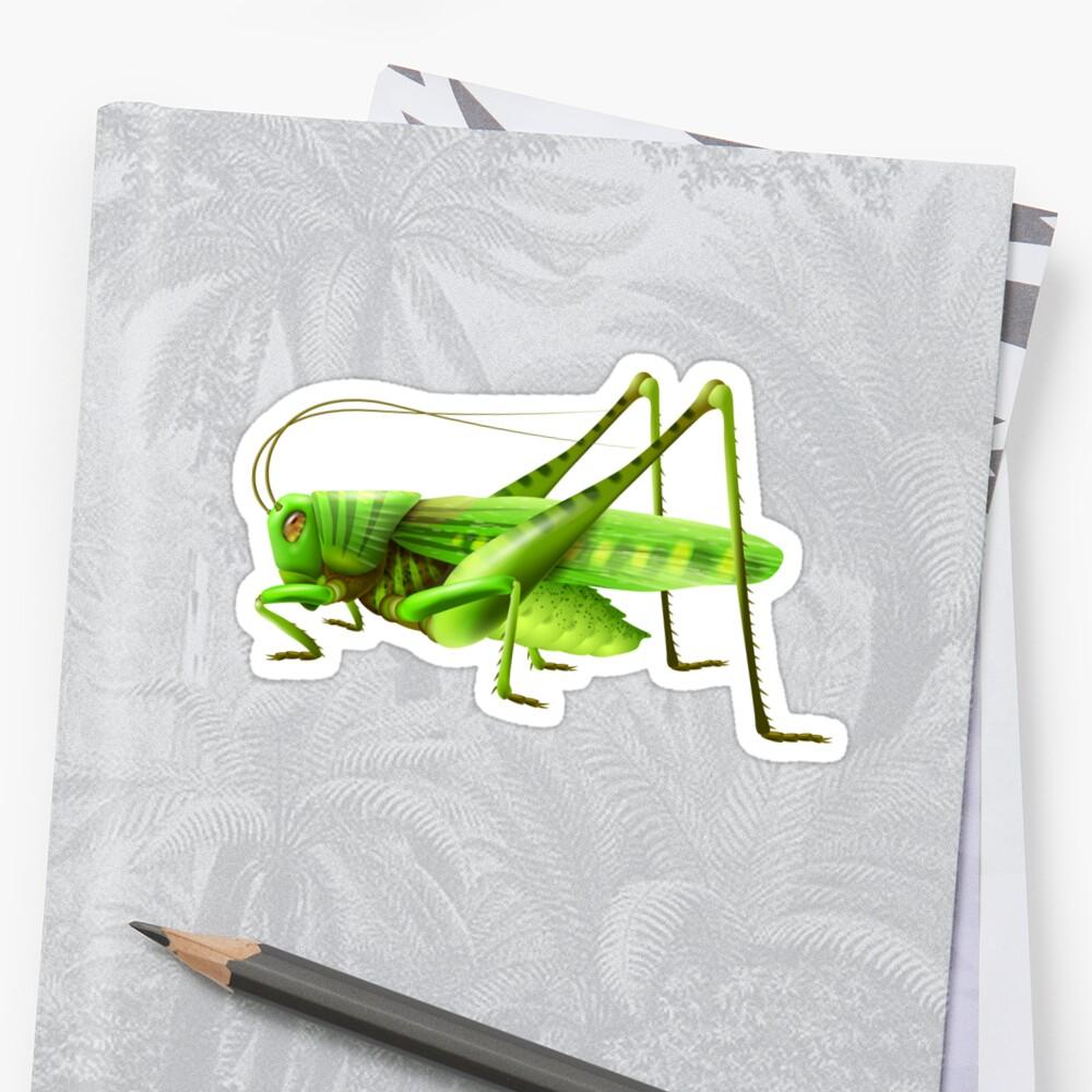 Grasshoper by Smaragdas