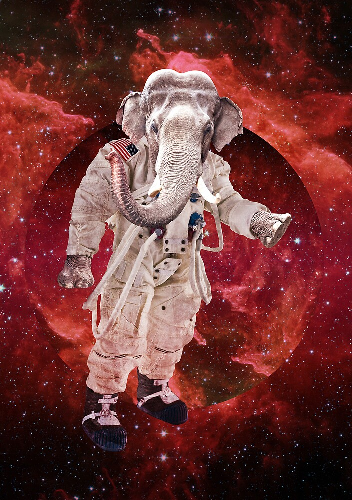 Astro elephant by societystyle