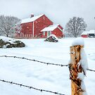 Connecticut Farm by Bruce Taylor