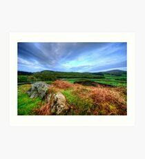 Duddon Valley, Lake District Art Print