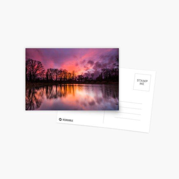 Solstice Sunset  Postcard