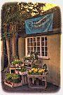 The Flower Shop by Nigel Bangert