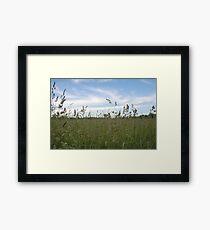 Knee-High View Framed Print