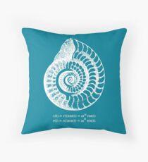 Spiral Shell with Math (blue) Throw Pillow